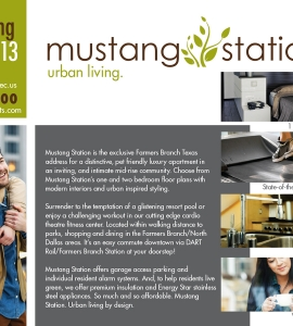Mustang Station